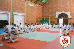 Jourée découverte judo 2019-5
